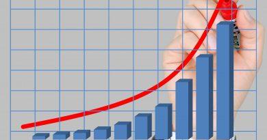 nachhaltiger Wachstum