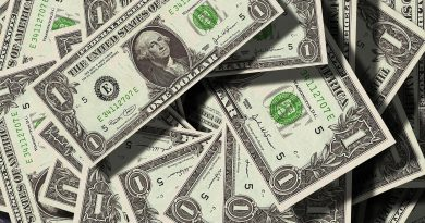 Liquiditätsdisposition