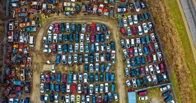 Skoda Fahrzeugbörse
